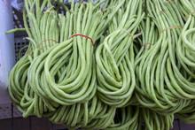 Thai Long Green Bean