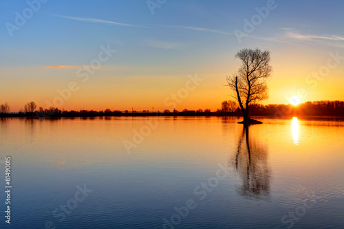 Foto op Canvas Meer / Vijver Sun and tree in lake
