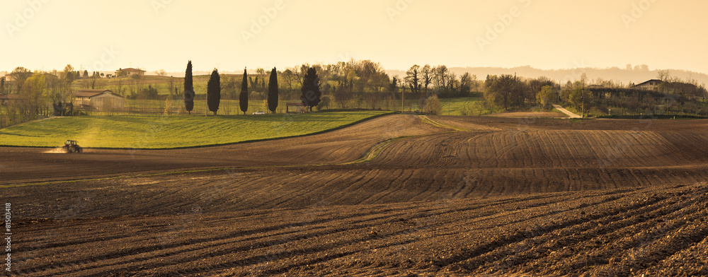 Fototapety, obrazy: Agriculture