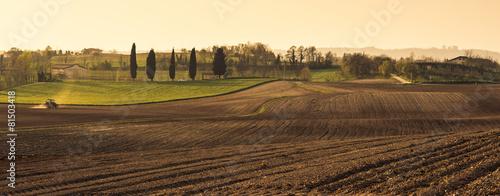 Fotografie, Obraz  Agriculture
