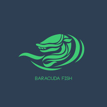 Baracuda Fish Logo Vector