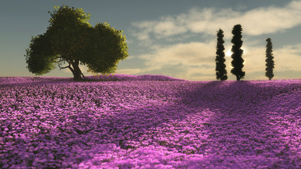 Obraz Pink Flowers Sea, 3d CG