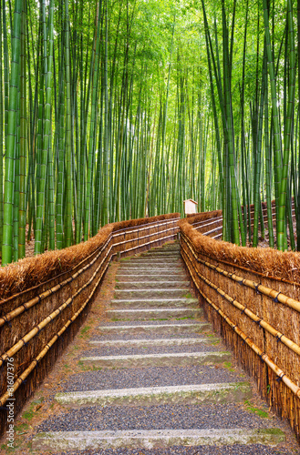 Fototapeta Droga w lesie bambusowym