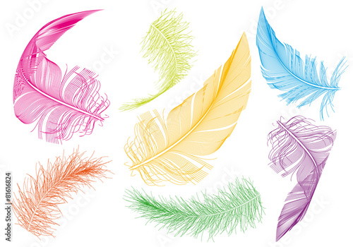 colorful feathers, vector set
