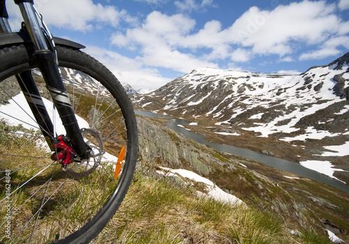 Mountain bike rider view #81624848