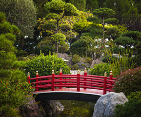 Fototapeta Red bridge in Japanese garden