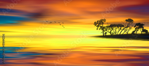Fotobehang Zwavel geel Beautiful landscape with birds