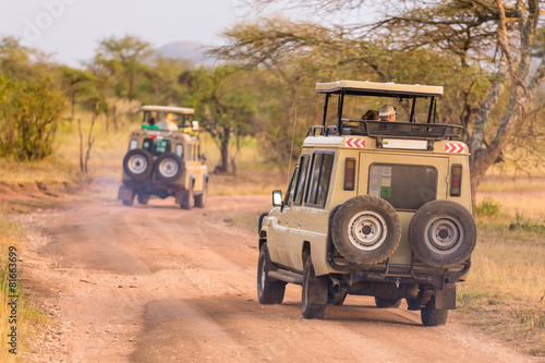 Poster  Jeeps on african wildlife safari.