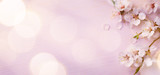 Fototapeta Kwiaty - Art  Spring border background with pink blossom