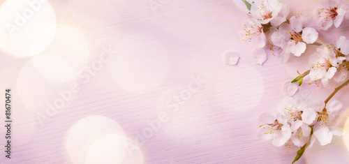 Staande foto Bloemen Art Spring border background with pink blossom