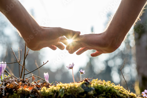 Tuinposter Natuur Hand Covering Flowers at the Garden with Sunlight