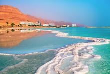 Dead Sea Salt Shore. Ein Bokek...