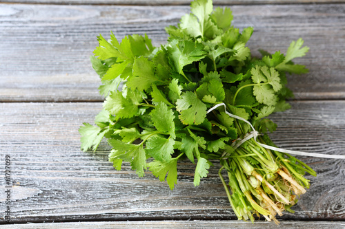 Fototapeta bunch of fresh cilantro on the boards obraz