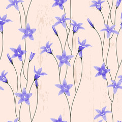 FototapetaSeamless background with bellflowers