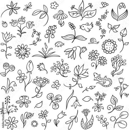 kontury-z-motywami-kwiatowymi