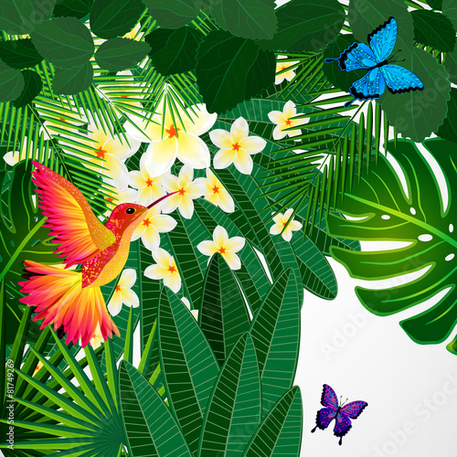 Fototapety, obrazy: Tropical floral design background with bird, butterflies.