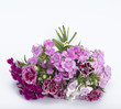 carnation bouquet isolated on whiet background
