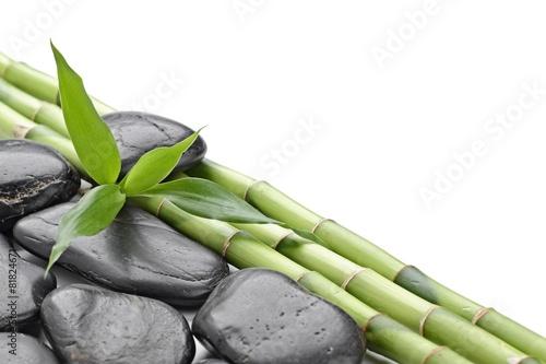 kamienie-zen-pod-bambusem