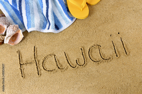 Foto op Canvas Australië Hawaii beach background