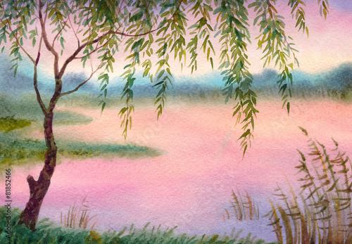 willow-nad-jeziorem