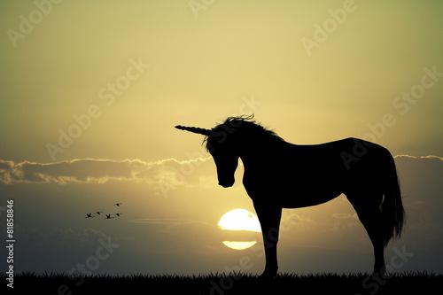 Fotografie, Obraz  Unicorn silueta