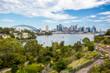 Sydney Skyline Waverton Peninsula Reserve