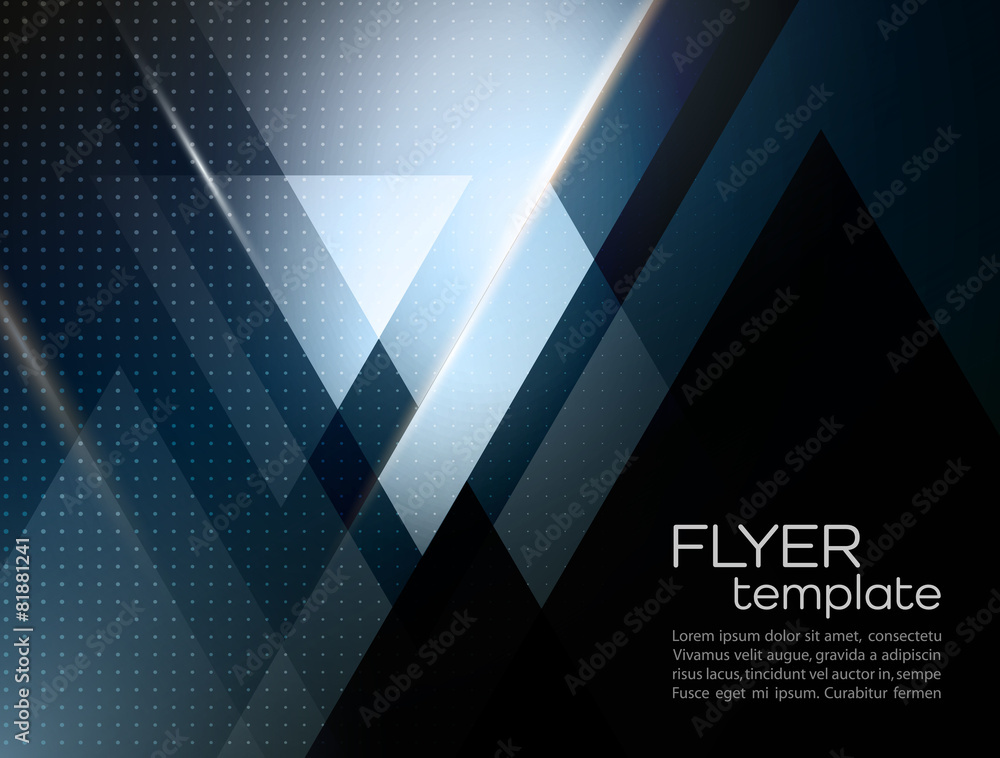 Fototapeta Vector abstract geometric background with triangle