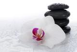 Fototapeta Kamienie - White orchid and spa stones