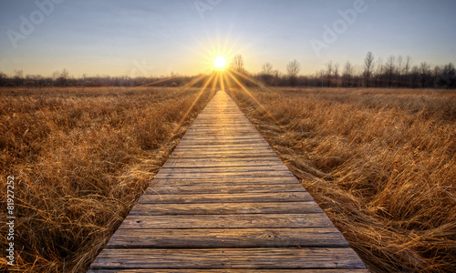 Fotografie, Obraz  Prairie Boardwalk Sunset