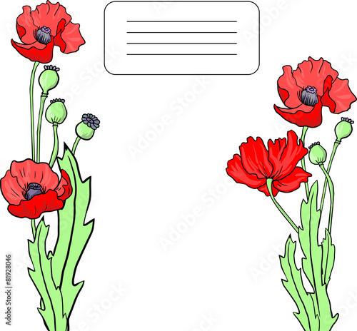 Fototapeta card with poppy flowers obraz na płótnie