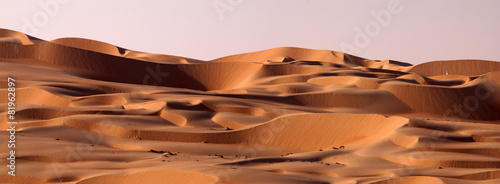Abu Dhabi dune's desert