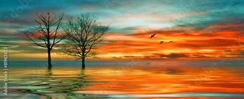 Poster Oranje eclat Beautiful landscape with birds
