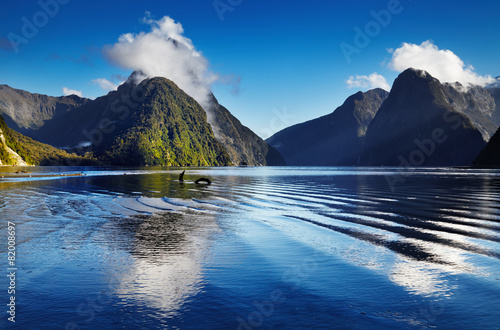 Montage in der Fensternische Neuseeland Milford Sound, New Zealand