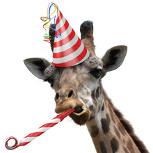 Funny Giraffe Party Animal Mak...