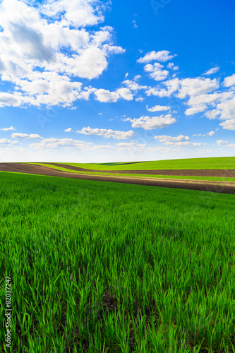 Deurstickers Groene landscape with a farm field under sky with clouds