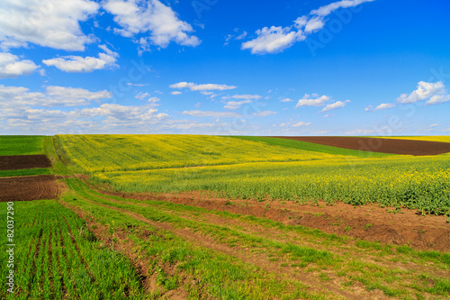 Foto op Aluminium Purper landscape with a farm field under sky with clouds