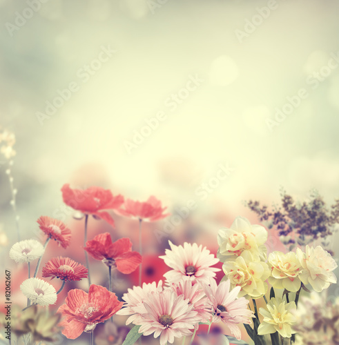 Foto op Aluminium Bloemen Colorful Flowers