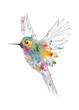 Leinwandbild Motiv Kolibri