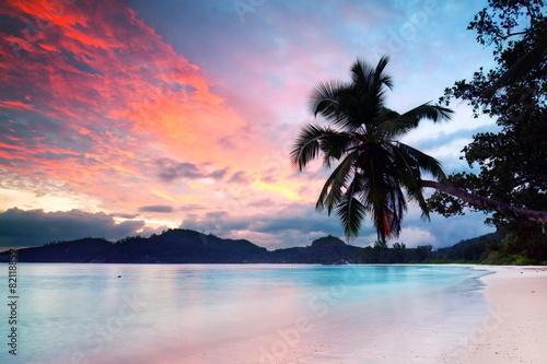 Papiers peints Palmier Seychellen - Abendlicht