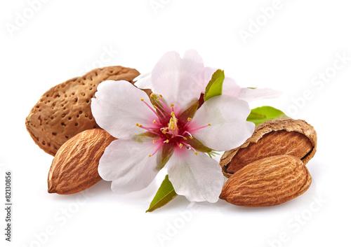 Fotografia Almonds with flowers