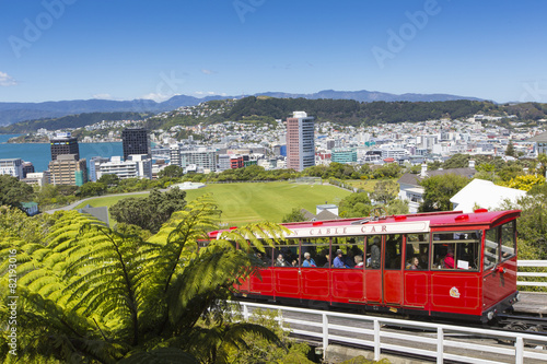 Spoed Foto op Canvas Nieuw Zeeland View of the Wellington, New Zealand