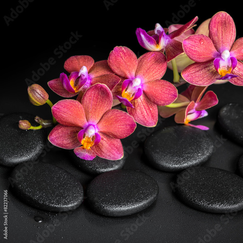 Tuinposter Spa beautiful spa concept of blooming twig red orchid flower, phalae