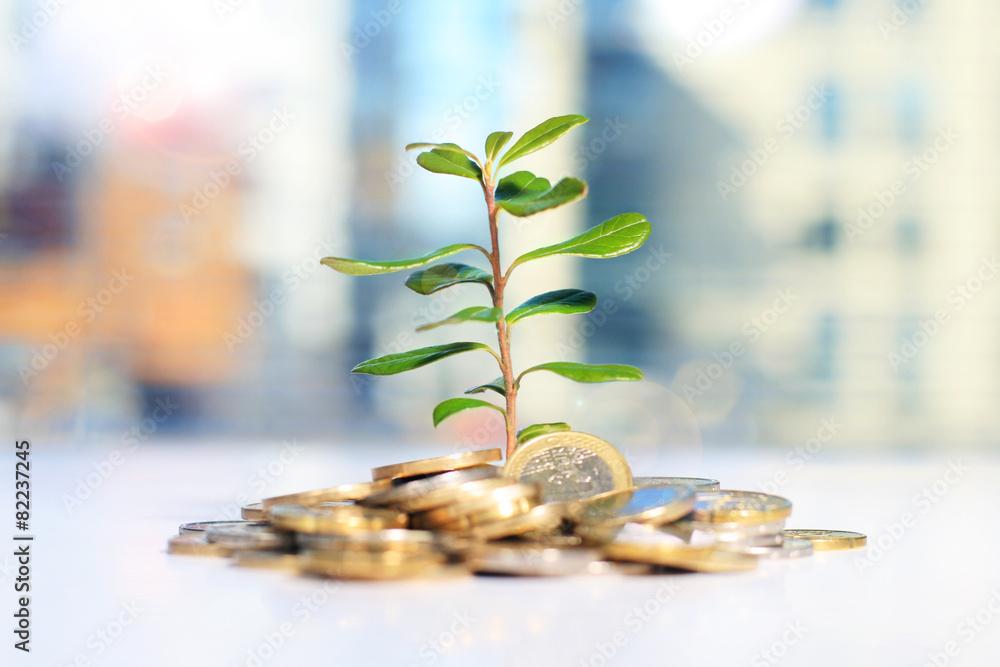 Fototapeta Successful investment