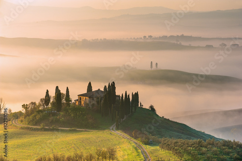 In de dag Toscane Mist flowing in the green fields of Tuscany in the morning