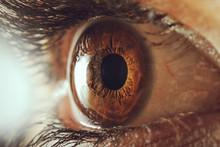 Human Eye - Macro Shot
