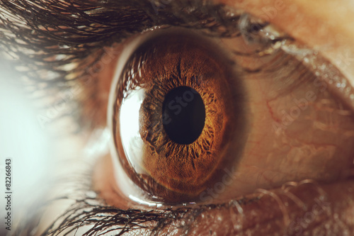 Spoed Foto op Canvas Macrofotografie Human eye - macro shot