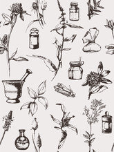Hand-drawn Set Of Objects And Herbs. Vector