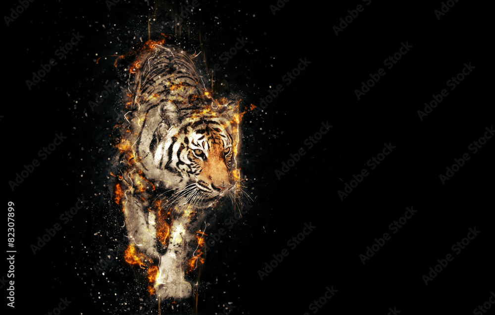 Fototapeta Burning tiger over black background