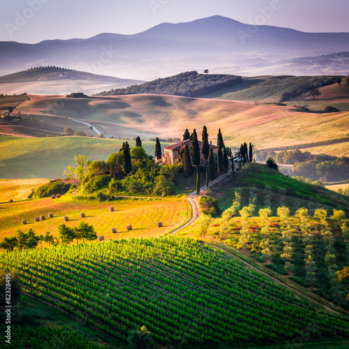 Foto op Aluminium Olijfboom Tuscany, landscape and farmhouse in the hills of Val d'Orcia