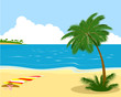 Sea shore with palm tree